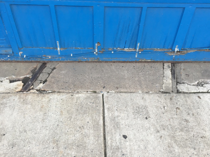 tim mcfarlane daily observations photo blue tracks