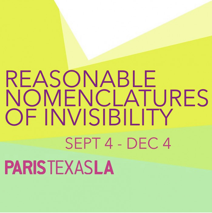 Reasonable Nomenclatures of Invisibility at ParisTexas LA